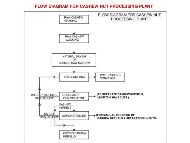 cashew control company plan