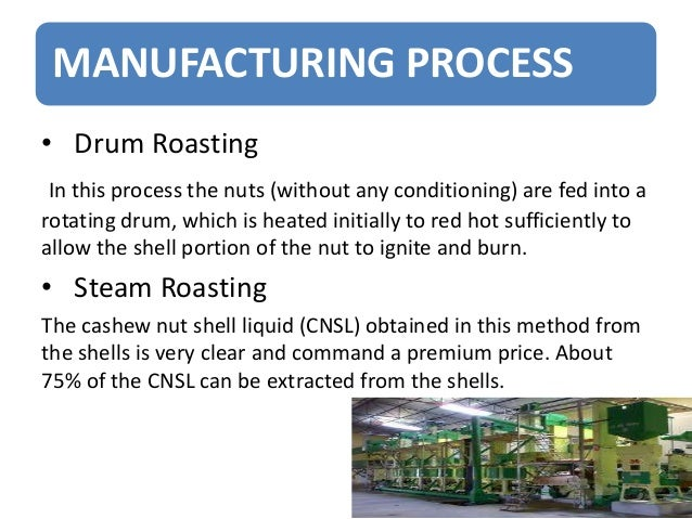 Cashew nut processing business plan
