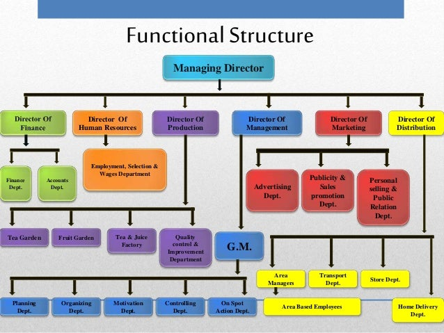 McDonald's Organizational Structure Analysis