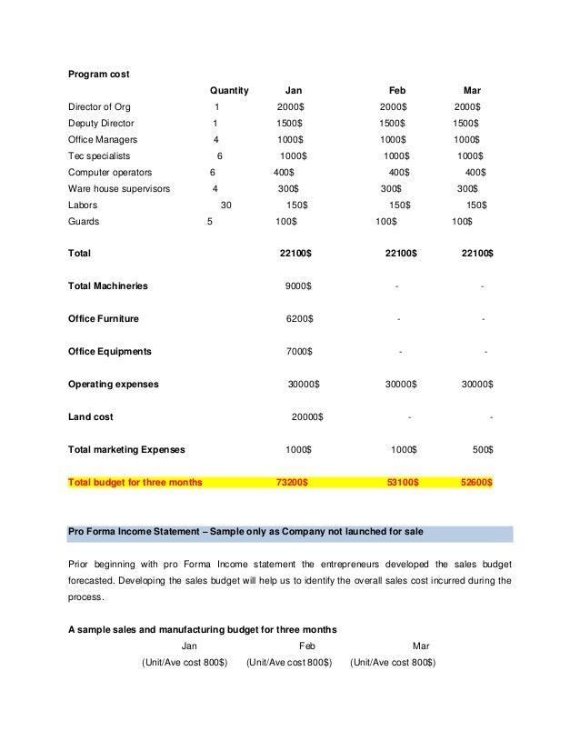 sales business plan sample