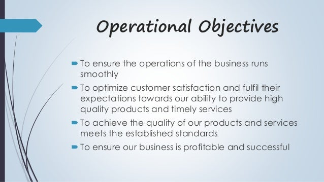 Business Operations Plan Sample