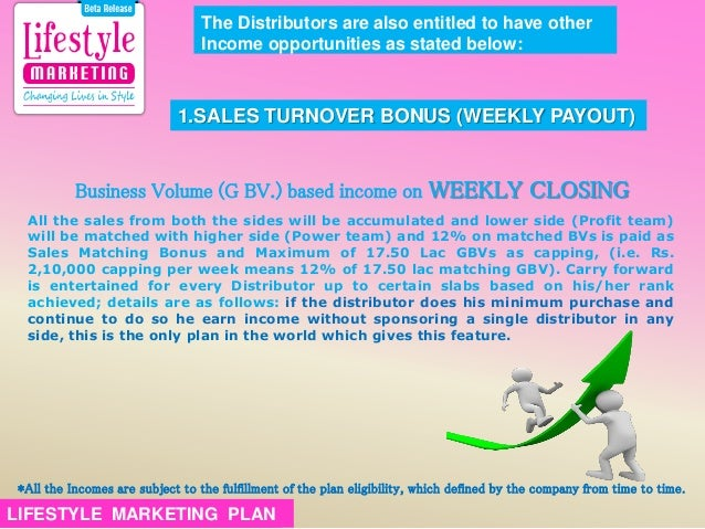 My business plan essay lifestyle marketing