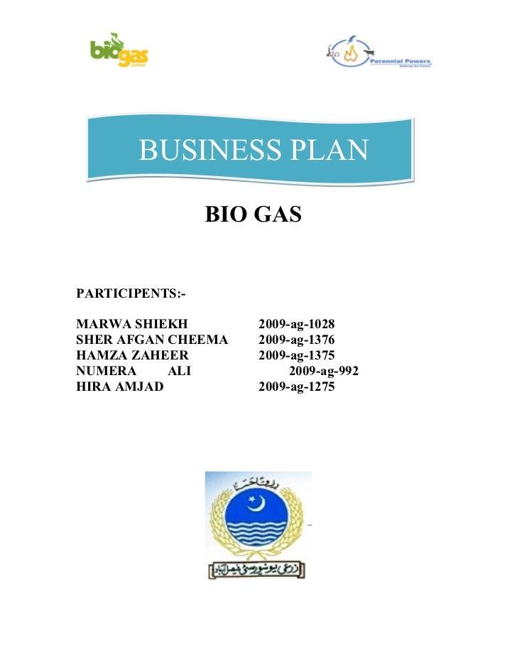 Business plan biogas