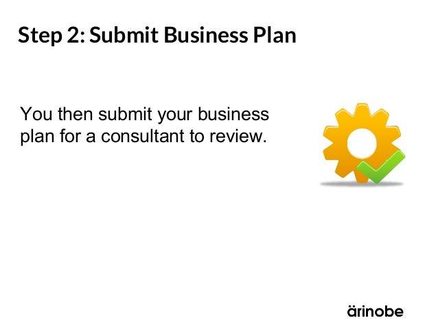 business plan critique