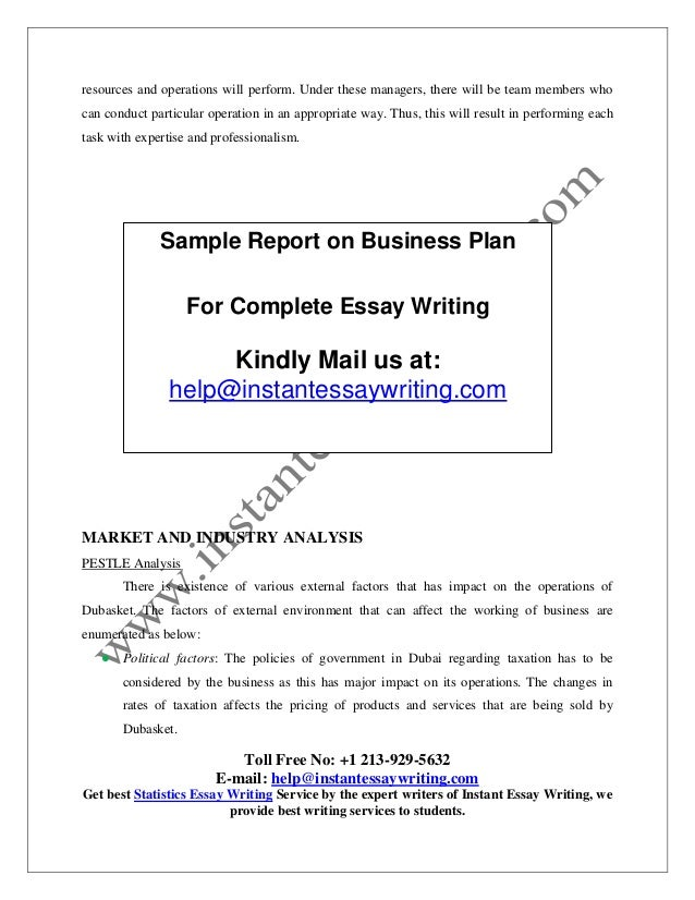 sample report on business plan by instant essay writing information technology human 5
