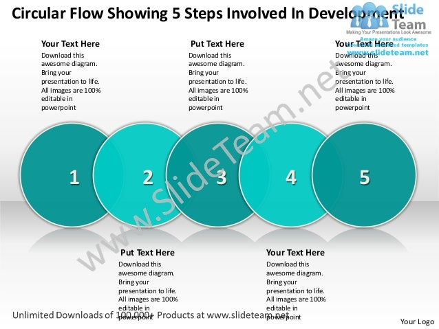 Circular Flow Showing 5 Steps Involved In Development   Your Text Here                                  Put Text Here     ...
