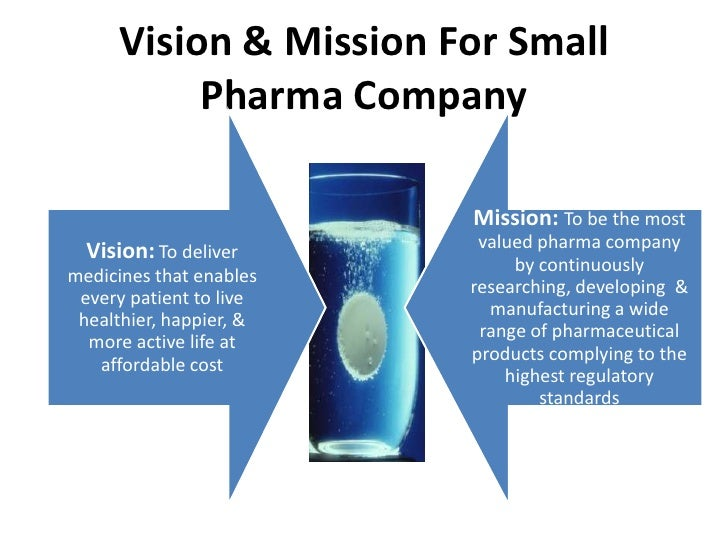 Business strategy for small pharma companies for Vision industries group