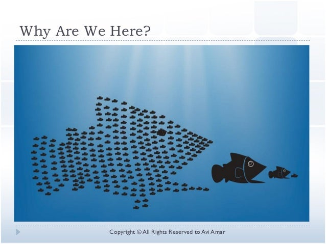 Why Are We Here? Copyright © All Rights Reserved to Avi Amar