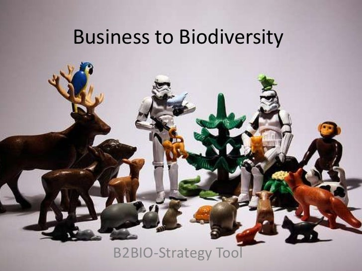 Business to Biodiversity<br />B2BIO-Strategy Tool<br />