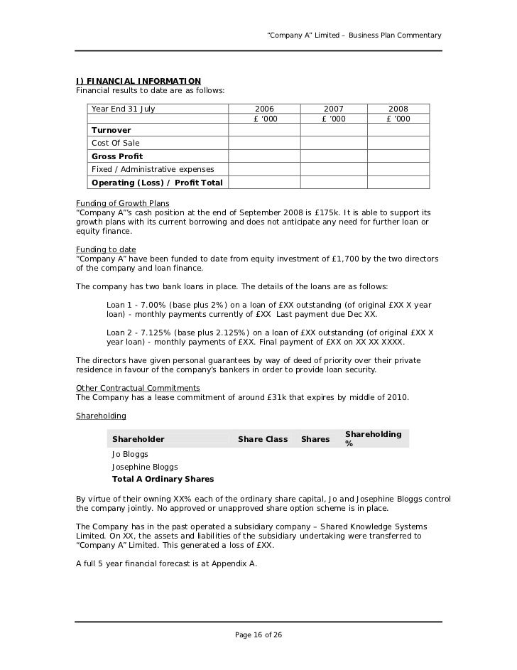 Business Plan Example Peccadillous - Generic business plan template
