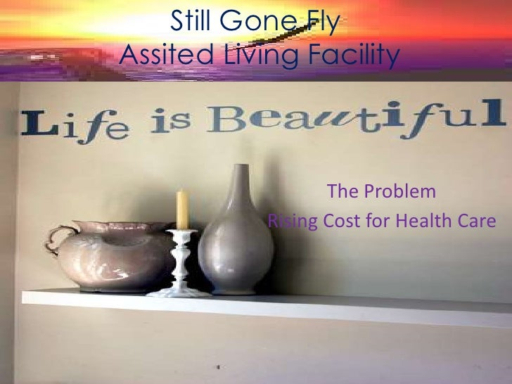 Still Gone Fly<br />Assited Living Facility<br />The Problem<br />Rising Cost for Health Care <br />