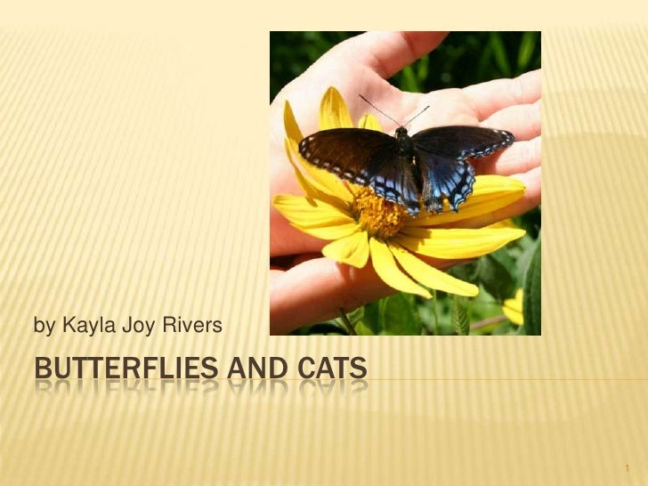 Butterflies and Cats<br />by Kayla Joy Rivers<br />1<br />