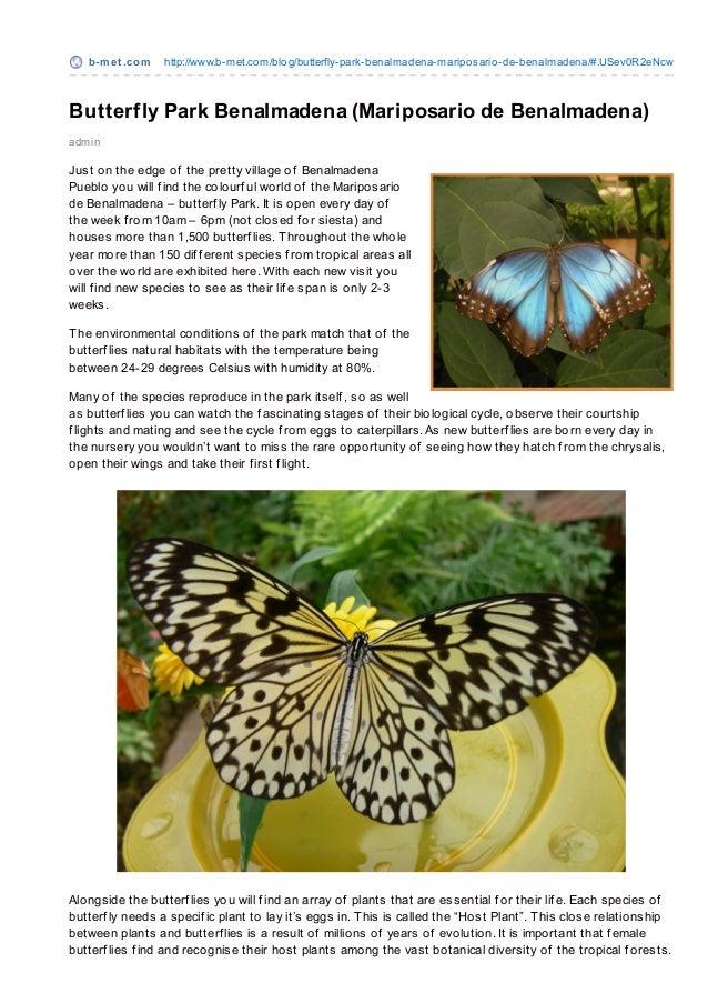b-m e t .co m   http://www.b-met.co m/blo g/butterfly-park-benalmadena-maripo sario -de-benalmadena/#.USev0R2eNcwButterfly...