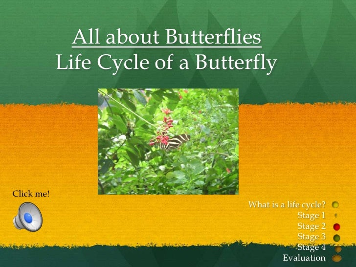 All about Butterflies            Life Cycle of a ButterflyClick me!                                 What is a life cycle? ...