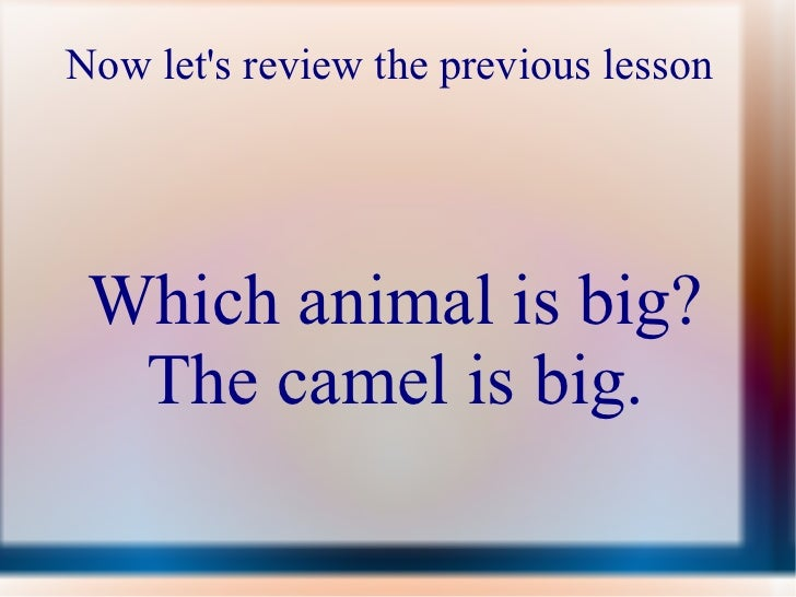 Now let's review the previous lesson  Which animal is big? The camel is big.