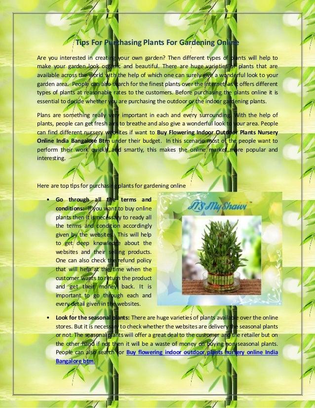 Buy flowering indoor outdoor plants nursery online india bangalore bt