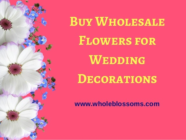 Buy Online Bulk Wholesale Flowers