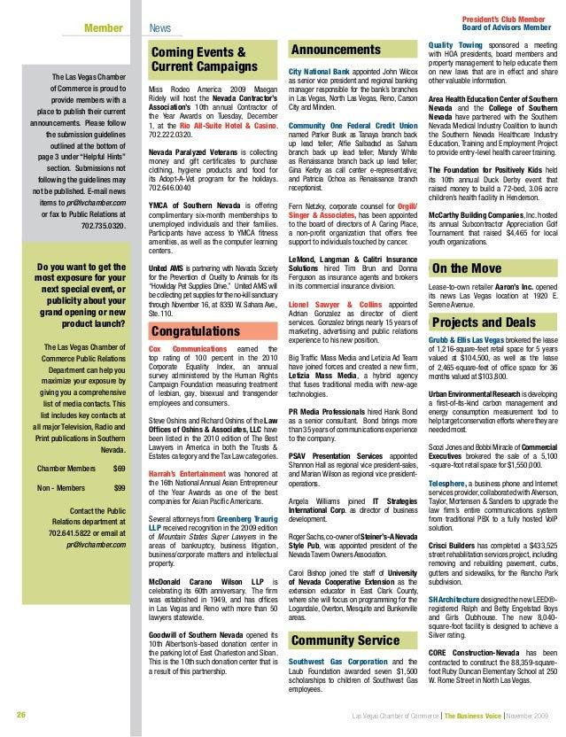 Business Voice November 2009