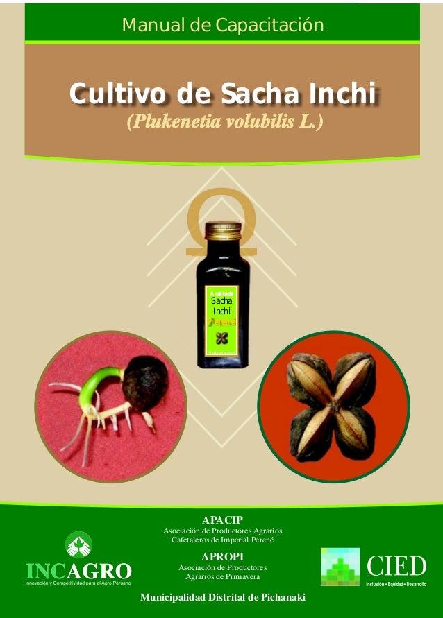 APROPI Asociación de Productores Agrarios de Primavera APACIP Cafetaleros de Imperial Perené Asociación de Productores Agr...