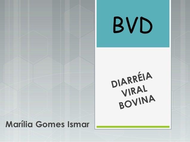 BVD DIARRÉIA VIRAL BOVINA Marília Gomes Ismar