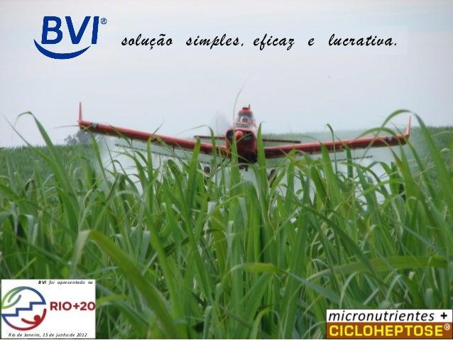 solução simples, eficaz e lucrativa.  BVI foi apresentado na  Rio de Janeiro, 15 de junho de 2012