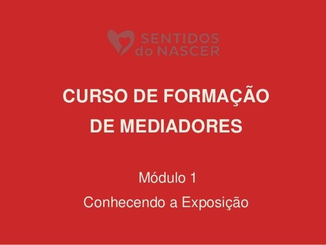 CURSO DE FORMAÇÃO DE MEDIADORES Módulo 1 Conhecendo a Exposição