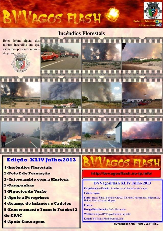 BVVagosFlash XLIV –Julho 2013 –Pág. 1 Bole m Mensal Informa vo Incêndios Florestais Estes foram alguns dos muitos incêndio...