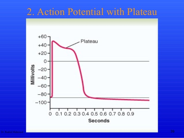 Action potential action potential with plateau ccuart Choice Image