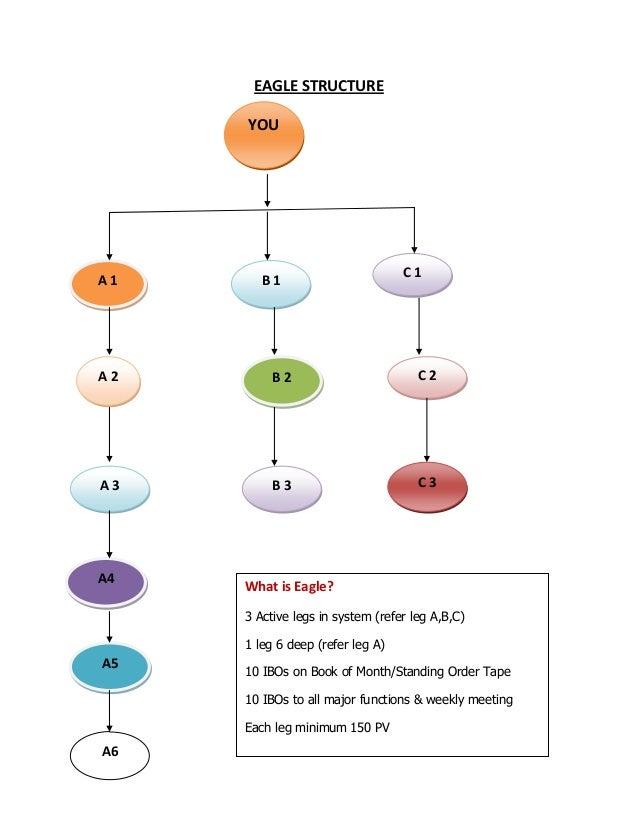 bww amway business plan pdf