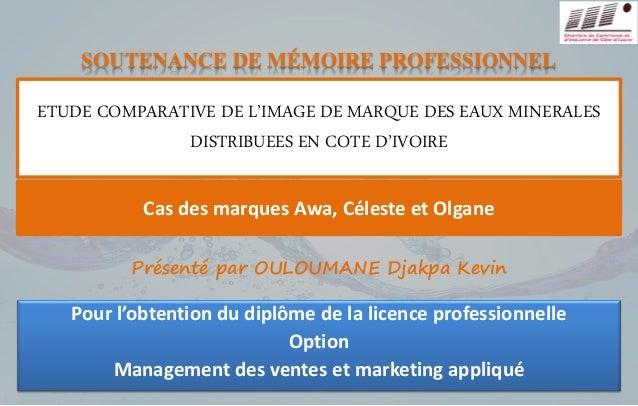 SOUTENANCE DE MÉMOIRE PROFESSIONNEL  ETUDE COMPARATIVE DE L'IMAGE DE MARQUE DES EAUX MINERALES  DISTRIBUEES EN COTE D'IVOI...