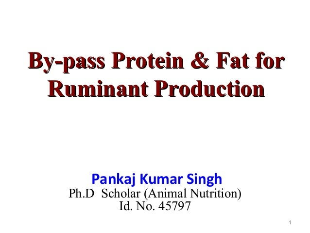 example of bypass protein in cows diet