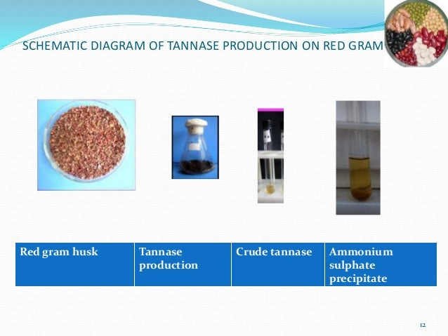 fertilizer formulation plant brief report 2 review of literature  utilized for improving plant  a brief review of literature pertaining to the present research problem is presented.
