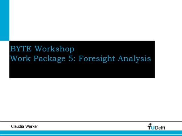 Claudia Werker BYTE Workshop Work Package 5: Foresight Analysis