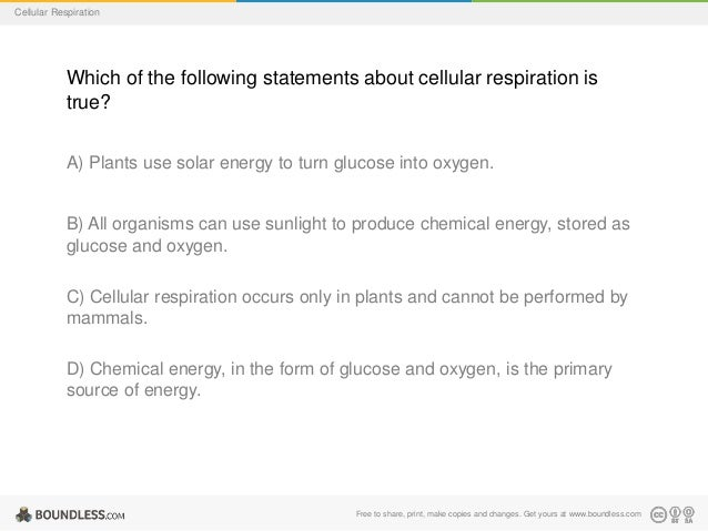 C. cellular respiration check your learning