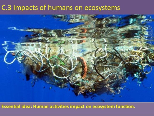 human impact on biodiversity and ecosystem Human impact on biodiversity and ecosysytem loss magdaléna jilečková the english college in prague abstract biodiversity and ecosystem are crucial issues that have an impact to the human.