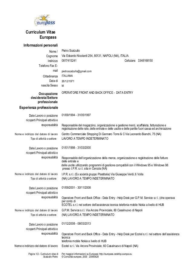 curriculum vitae di pietro scalzullo pdf
