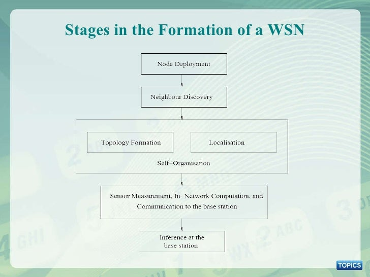 Stages in the Formation of a WSN