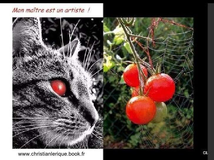 www.christianlerique.book.fr