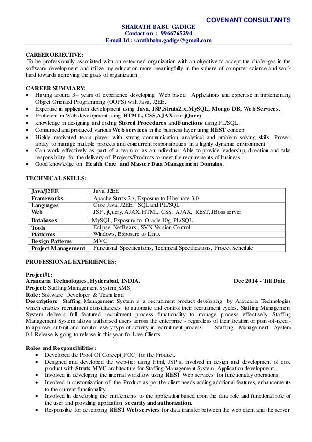 sample resume for technical lead