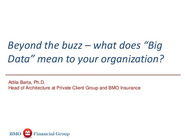 """Beyond the buzz – what does """"Big Data"""" mean to your organization? Attila Barta, Ph.D. Head of Architecture at Private Clie..."""