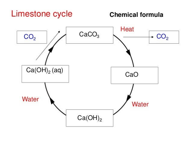 Image result for limestone cycle