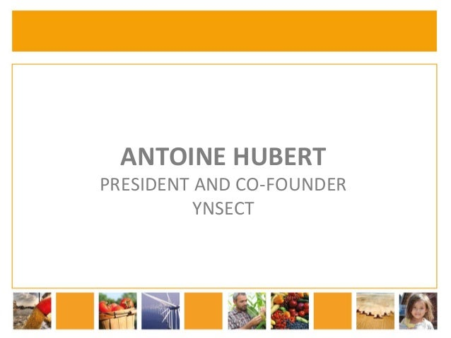 ANTOINE  HUBERT  PRESIDENT  AND  CO-­‐FOUNDER  YNSECT