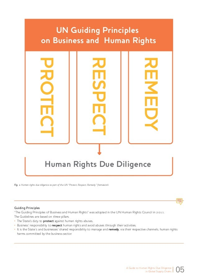 un guiding principles on business and human rights pdf