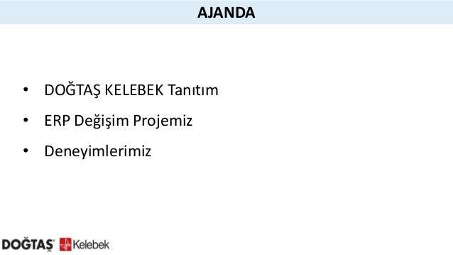 IDC_yavuz_selim_hindistan_dogtas_kelebek Slide 2