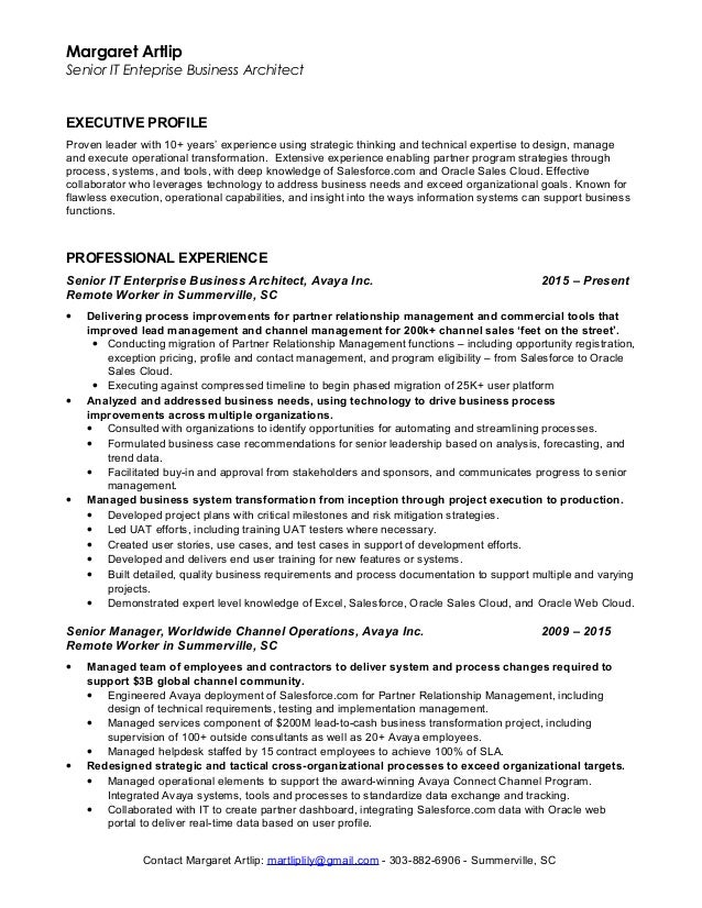 Margaret Artlip Senior IT Enteprise Business Architect EXECUTIVE PROFILE  Proven Leader With 10+ Yearsu0027 ...  Technical Architect Resume