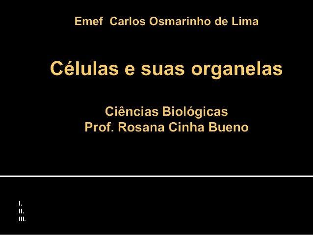 As células - Objetivos: I.Reconhecer a célula como unidade básica estrutural e funcional II.Identificar a função dos compo...