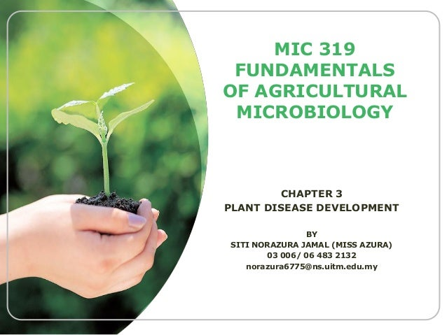MIC 319 FUNDAMENTALS OF AGRICULTURAL MICROBIOLOGY  CHAPTER 3 PLANT DISEASE DEVELOPMENT BY SITI NORAZURA JAMAL (MISS AZURA)...