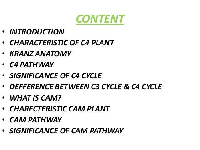 C4 path way & cam cycle