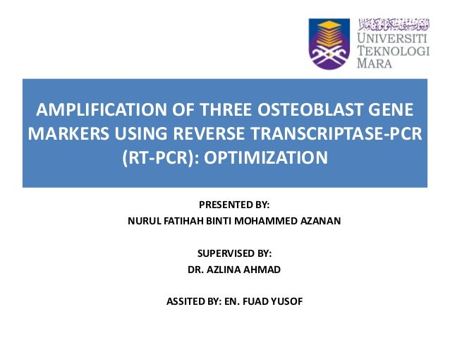 AMPLIFICATION OF THREE OSTEOBLAST GENE MARKERS USING REVERSE TRANSCRIPTASE-PCR (RT-PCR): OPTIMIZATION PRESENTED BY: NURUL ...