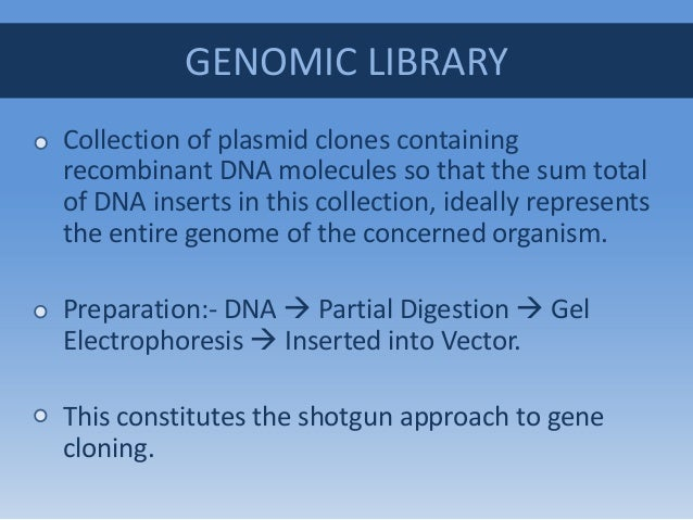 experiment creating a genomic library of A genomic dna library is a collection of dna fragments that make up the full- length genome of an organism a genomic library is created by isolating dna  from.